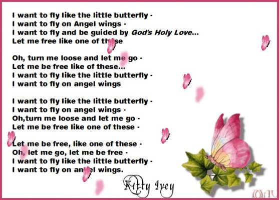 The Butterfly (a poem) by Kitty Ivey