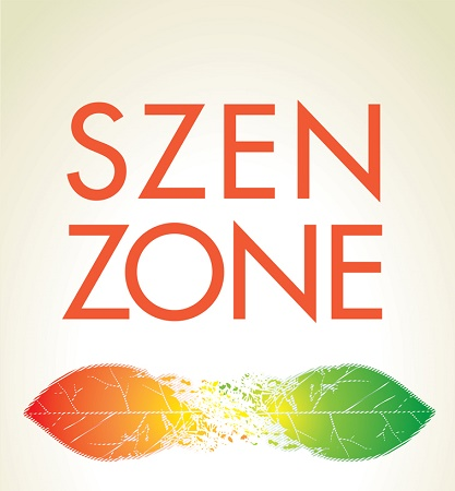 The Szen Zone MECH.indd
